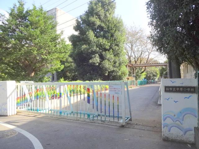 柏市立中原小学校